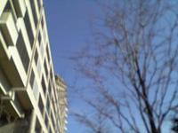 060324_aozora